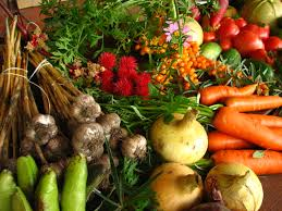 winter season vegetables for your garden vegetable gardener