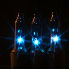 50 blue lights on black wire