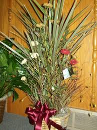 funeral plants carol s flower box funerals