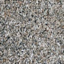 What Is Stainmaster Carpet Made Of Shop Stainmaster Essentials Sonora 12 Ft W X Cut To Length Cavern