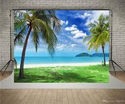 2017 susu 7x5ft220x150cm palm trees photography backdrops blue sky 20