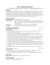 Consulting Resumes Examples Summary And Professional Experience Web Developer Resume For