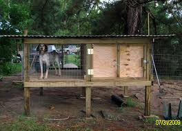 Cheap Hunting Cabin Ideas Cheap Easy To Build Off The Ground Kennels Google Search House