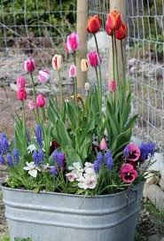 top 12 easy spring flower garden decors u2013 backyard design for