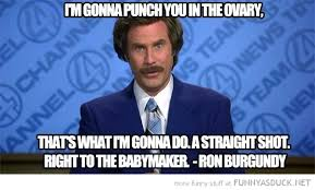 Will Ferrel Memes - funny pictures of will ferrell will ferrell quote punch ovary