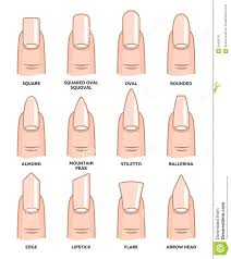 nail shapes chart beautify themselves with sweet nails