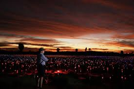field of light uluru bruce munro at field of light uluru abc news australian