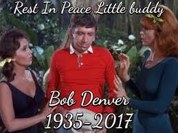 Denver Meme - bob denver from gilligan s island died again in fake meme