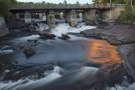native plant sale muskoka conservancy the story of the muskoka river a struggle between preservation