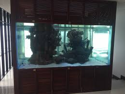 custom fish tanks u0026 aquariums we build and maintain fish tanks