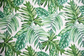 temporary wallpaper palm leaf temporary wallpaper video daily dose of charm