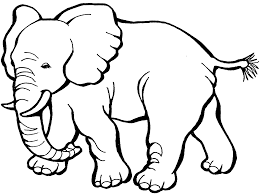 colouring pages coloring book elephant at painting animal coloring