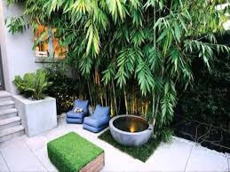 Interior Garden Design Ideas by Garden Design Tips To Deal With Small Space Theydesign Net