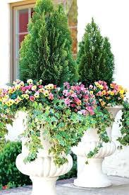 Winter Gardening Ideas Winter Gardening Ideas 1 2 3 Indoor Vegetable Gardening Ideas