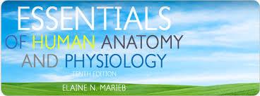 Human Anatomy And Physiology Marieb Hoehn Human Anatomy And Physiology Marieb 9th Edition Access Code