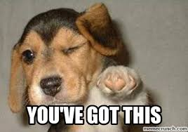 Good Luck Meme - good luck puppy meme browse our shop https www sunfrog com