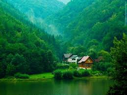 dream green homes image detail for dream green home hqwallpapers 1 high quality