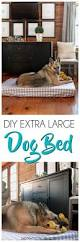 Upcycled Drawer Pet Bed Diy by Best 25 Large Dog Beds Ideas On Pinterest Large Dog Bed Diy