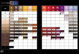 igora royal hair color color to develiper ratio paul mitchell the color xg color chart i luv m beauty parlour