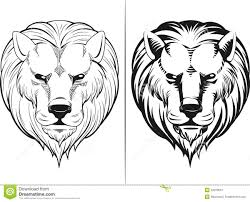 sketch of lion head royalty free stock photography image 32078657