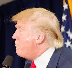 file donald trump haircut laconia by michael vadon july 16 2015