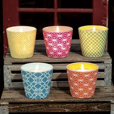 Bug f Citronella Candle from Jackson & Perkins