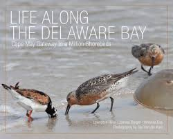Delaware wild animals images Online store purchase merchandise adopt a species conserve jpg