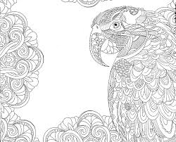 tropical parrot coloring colorir coloring pages coloriage