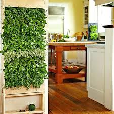 Grow Lights For Indoor Herb Garden - indoor wall garden plants indoor wall garden with grow lights