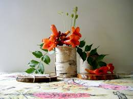 Birch Bark Vases Resurrection Fern Making Birch Bark Vases A Simple Tutorial