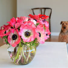 anemone flowers anemones anemone flower arrangements sf florist s day