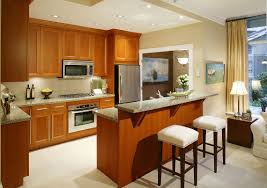 kitchen awesome kitchen design with black cabinet and granite