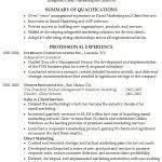 Professional Summary Resume Sample by Resume Professional Summary Ingyenoltoztetosjatekok Intended
