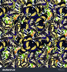 abstract geometric butterfly pattern wings tropical stock