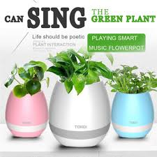 best modern plant pots to buy buy new modern plant pots