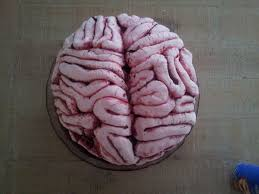 brain cake 8 steps with pictures
