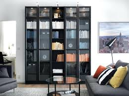 Living Room Cabinets With Doors Not So Ordinary Raised Ranch Corner Bookshelf For Living Room