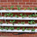 how to make vertical strawberry tube planter diy crafts how to