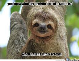 Cute Sloth Meme - 128 best sloth memes images on pinterest sloth memes sloths and