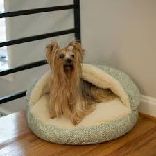 Hooded Dog Bed Snoozer Cozy Cave Dog Beds Hooded Dog Beds Cave Domed Beds