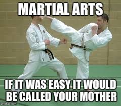 Meme Karate - karate side kick memes imgflip