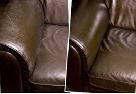 Leather Conditioner For Sofa Benefits Of Jojoba In A Leather Conditioner Isld