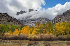 eastern sierra fall color update michael frye photography