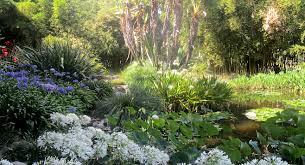 Botanical Gardens Huntington Huntington Library Botanic Gardens L A Day Trip San Diego Reader