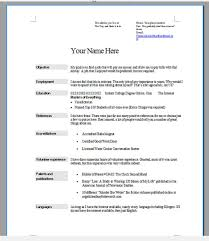 the best resume format ever nice resume formats 4