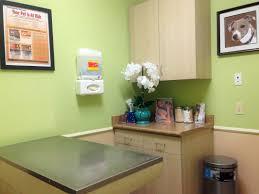 examination rooms bear valley animal hospital