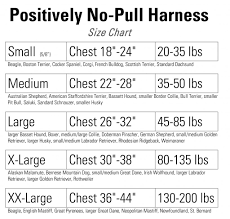 introducing the newly redesigned positively no pull harness