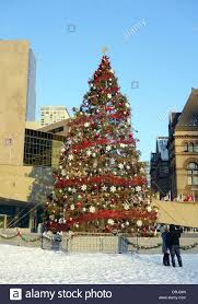 tree in nathan phillips square in toronto canada stock
