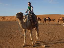 family camel trek along the atlantic coast trekking in morocco