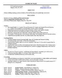 hybrid resume template hybrid resume template shatterlion info